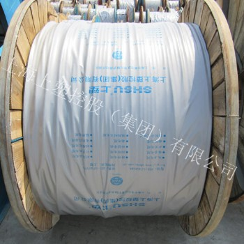 上海上塑电线电缆450/750V YCW橡套电缆 4*1