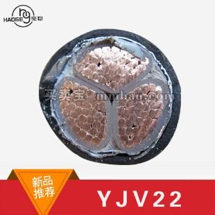 亚飞电缆 0.6/1KV 电力电缆YJV22 3*185