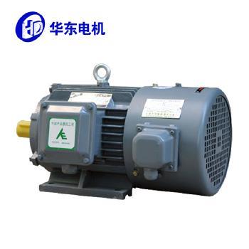 【华东】YE3VP超高效率变频电动机