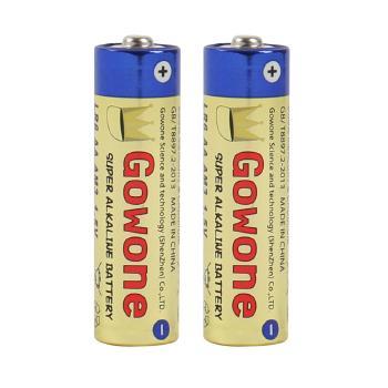 Gowone购旺 无汞环保碱性电池出口简装 5号 AA LR6 血压计遥控器闹钟电池