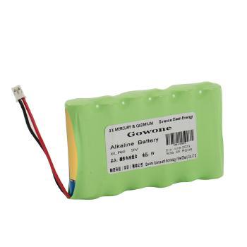 Gowone购旺 环保碱性电池组 仪器仪表 电动车 电动工具 电动玩具电池 5号   6LR6电池组 9V