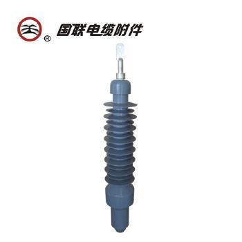国联电缆附件 110kV硅橡胶预制干式户外终端 YJZWG4 (含金具、含安装费)
