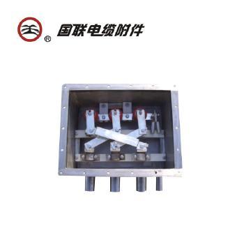国联电缆附件 35-110kV(三相)交叉互联箱CLB-3SZ(含安装费)