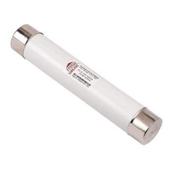 德力西电气 高压熔断器;XRNP1-12KV 1A 体 (Φ25×195)