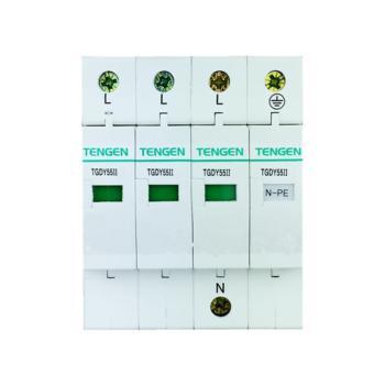 天正电气(TENGEN)TGDY55系列防浪涌保护器4070040114 TGDY55II-80 3P+N