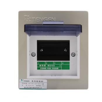 天正电气(TENGEN)暗装新型室内强电箱 4回路 06060071570 配电箱 PZ30-4
