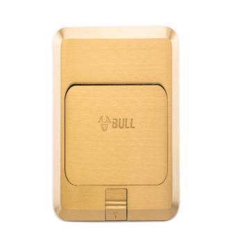 公牛(BULL) 地插纯铜防水弹起式双电脑地插座地面地板地脚插座GD1T222