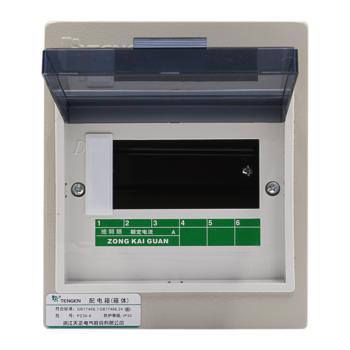 天正电气(TENGEN)明装新型室内强电箱 6回路 06060071583 配电箱 PZ30-6