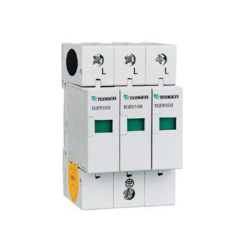 天正电气 TGDY55系列防浪涌保护器 TGDY55II-100 3P 4070040119