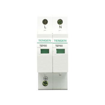 天正电气 TGDY55系列防浪涌保护器 TGDY55II-40 2P 4070040100